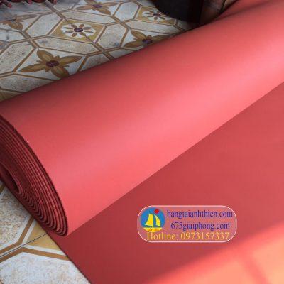 silicon tấm đỏ (3)